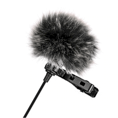 mic-windshield-1.png